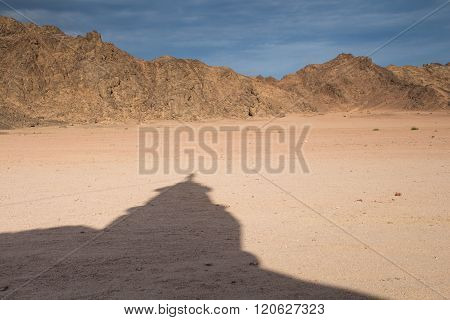 Desert And Shadow Of A Mosque In The Sand, Egypt