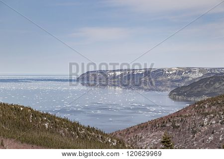 Floating Ice At Cabot Trail