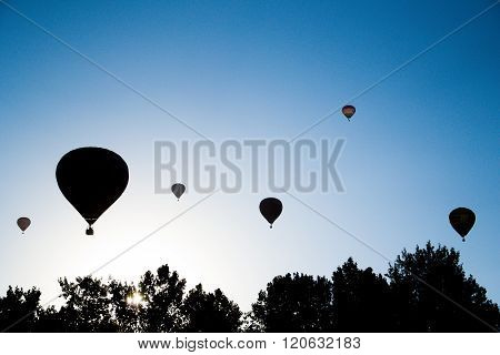 Silhouette Of Air Balloons Take Of On The Air Balloon Festival In Agárd, Hungary