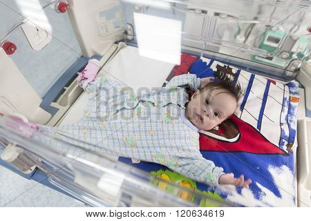 Baby Through An Incubator