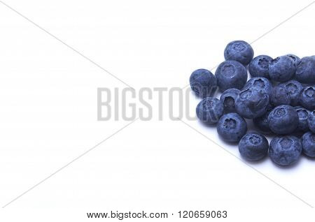 Blueberries and copy space with clipping path
