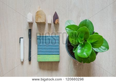 Top View Of Stationery And Pepperomia Plant