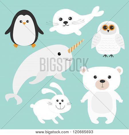 Arctic Polar Animal Set. White Bear, Owl, Penguin, Seal Pup Baby Harp, Hare, Rabbit, Narwhal, Unicor