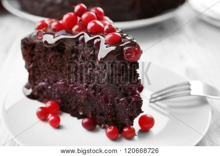 Piece of chocolate cake with cranberries on plate, closeup