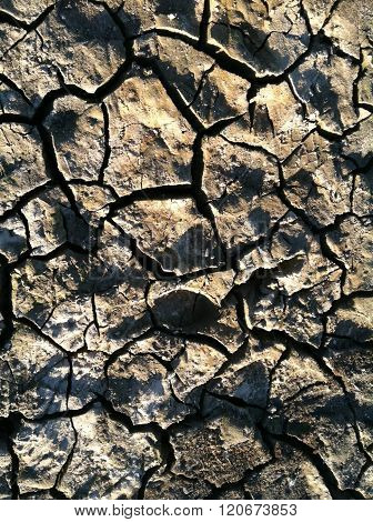 Drought-dried lake bed