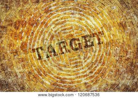 Single Word Target