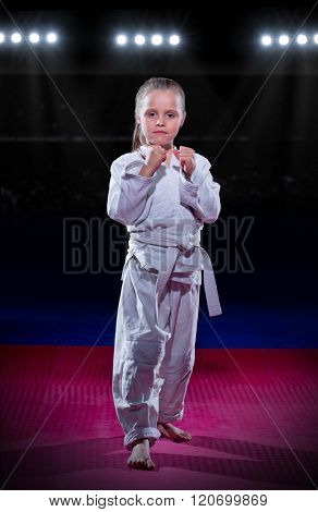 Little girl aikido fighter at sports hall