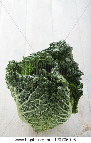 Image of fresh whole savoy cabbage on beautiful background