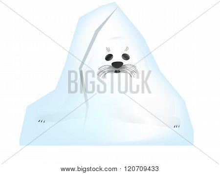 Belek in the ice