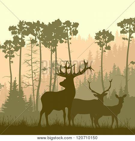 Square Illustration Of Wild Elk On Edge Of Forest.