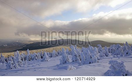 Wintertime on Brocken Mountain in Harz National Park near Braunlage,Harz Mountain,Germany ** Note: Visible grain at 100%, best at smaller sizes