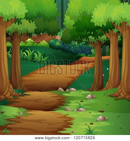 Forest scene with dirt road in the middle illustration