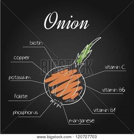 Vector Illustration Of Nutrients List For  Onion On Chalkboard Backdrop