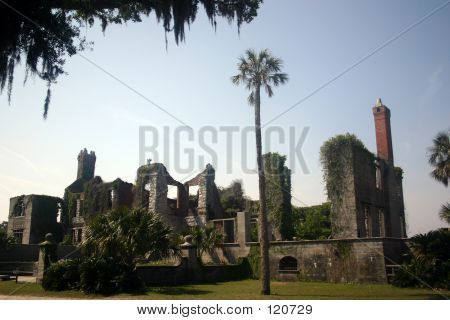 Ruins And Palm Tree