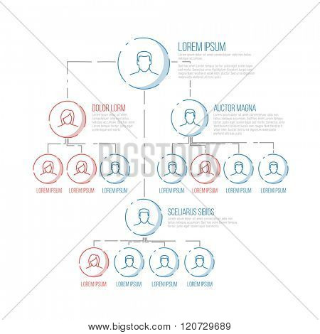 Company management hierarchy schema template with thin line profile icons