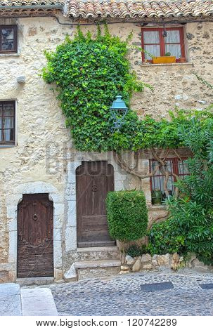 Traditional historic French home with ivy plant on the stone wall