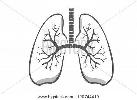 Lung symbol