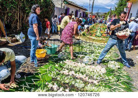 Making Lent Carpets In Street, Antigua, Guatemala