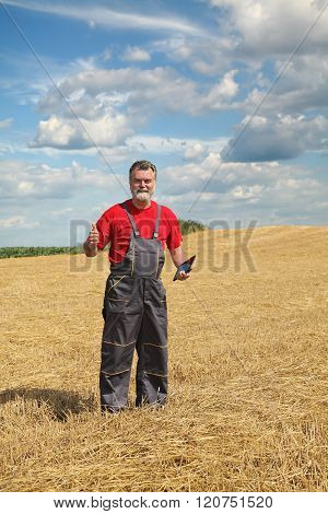Farmer Or Agronomist Inspect In Wheat Field After Harvest