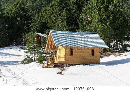 Wooden Alpine Chalet, Snow, Green Pine Trees