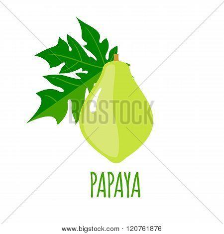 Papaya icon in flat style on white background