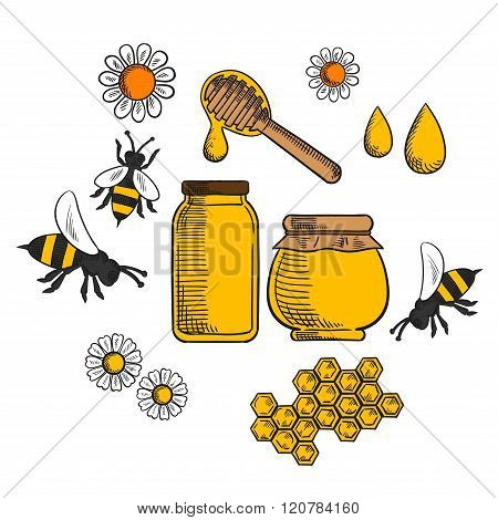 Beekeeping and farm honey icons