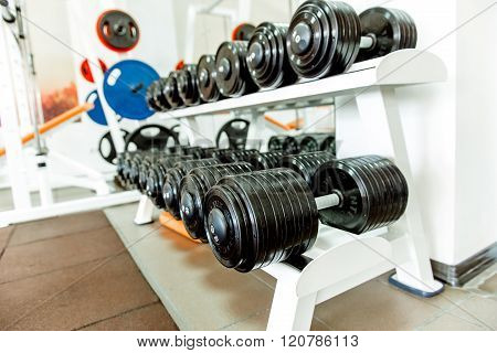 Various Dumbbells In Gym