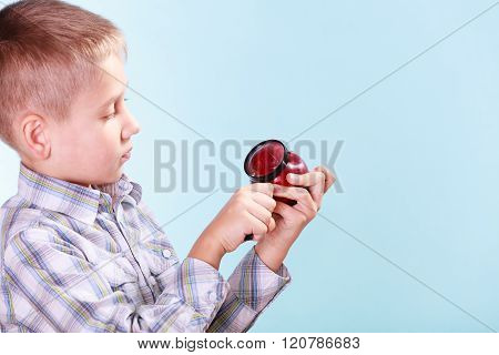 Kid Examine Apple With Magnifying Glass.