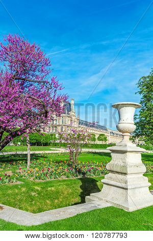 Tuileries Garden At Spring, Paris, France