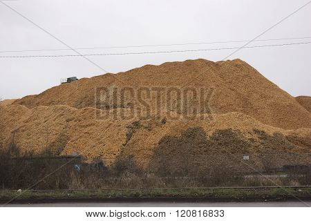 Mountain of woodchips