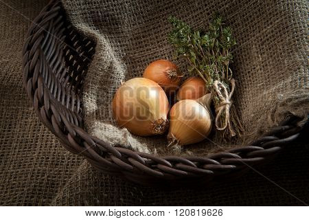 Bulb Onion And Sheaf Thyme In A Wicker Basket Which Stands On Burlap