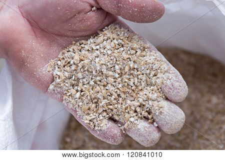 Hand Of A Man Full Of Dried Seeds