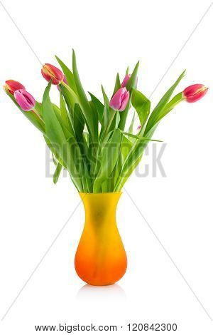Tulips Bouquet  In Glass Vase