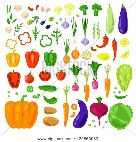 Set vector vegetables and herbs.