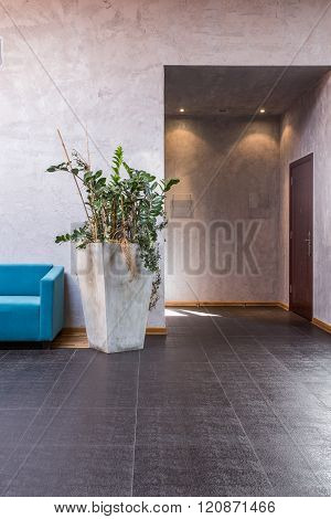 Entrance To The Hallway
