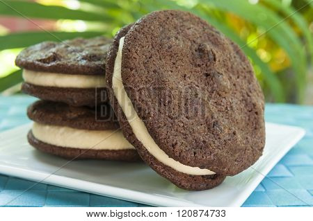 Double Chocolate Chip Peanut Butter Ice Cream Sandwich