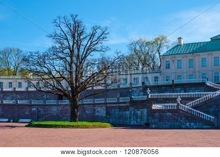 Forecourt of the palace with big tree