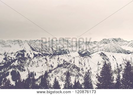 Sunrise panorama of snow covered alpine mountain peaks and valleys bathed in a soft light looking over the treetops of the forested slopes
