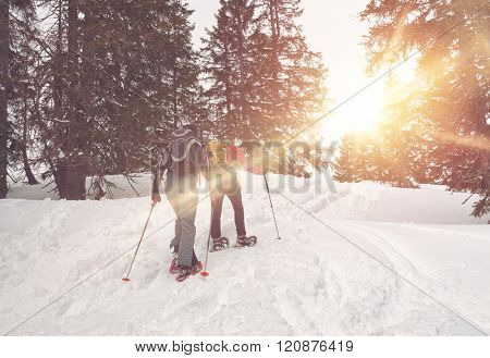 Pair of unidentifiable cross country snowshoe hikers traveling uphill through snow in winter as the sun beams through the trees