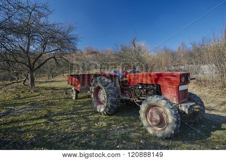 Old Tractor In The Orchard