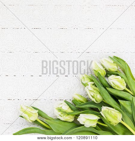 White Tulips On White Tablecloth. Bouquet, Top View, Copy Space, Holiday Background
