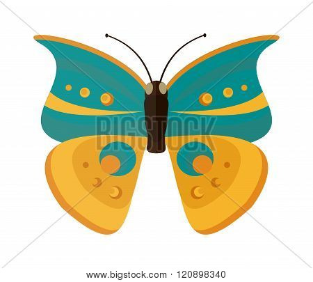 Colored cartoon Cabbage butterfly vector isolated on white background.