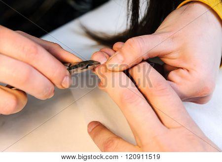 Manicure In A Beauty Salon.