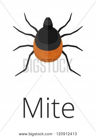 Mite skin parasite vector illustration