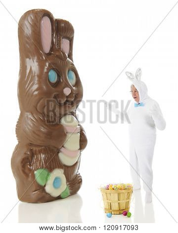 A senior man in a white rabbit outfit astounded by a giant chocolate bunny.  On a white background.