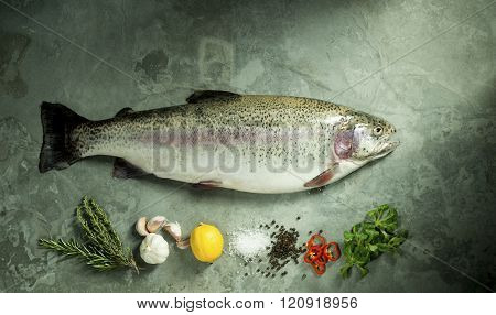 Beautiful Rainbow Trout With Fresh Herbs And Spices