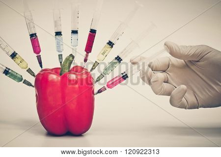 Genetically Modified Organisms. GMO Food and Plant Experiment