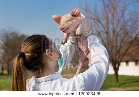 Veterinarian Girl Raising Piglet In The Air
