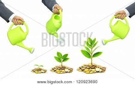 Businessmen watering trees growing on coins / Business with csr practice