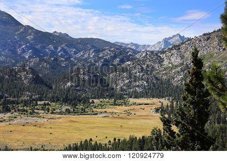 Meadow in Sierra Nevada Mountains Pickel Meadow